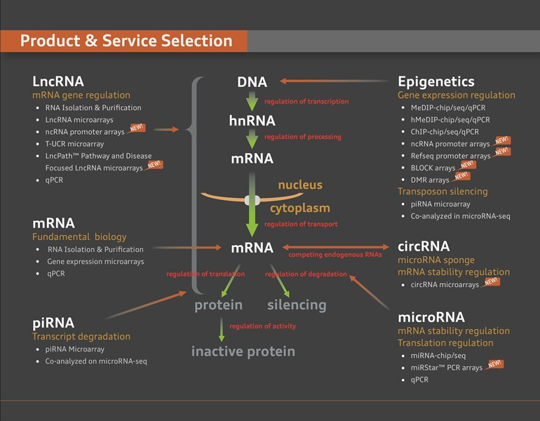 Product___Service_Selection_map