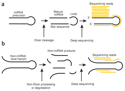 sequencing_data_analysis-9