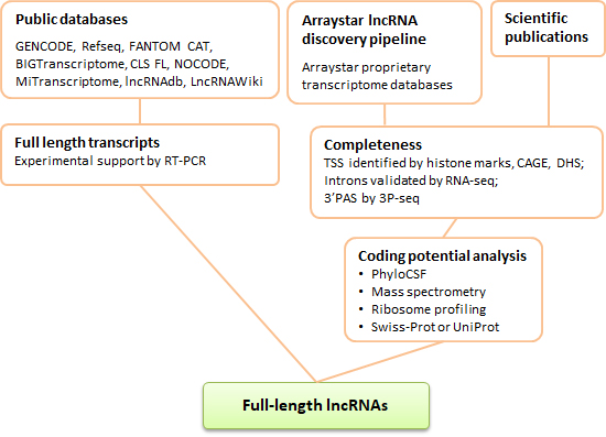 Full length lncrnas