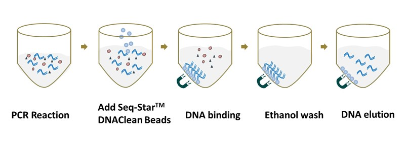 DNAClean DNA purification procedure