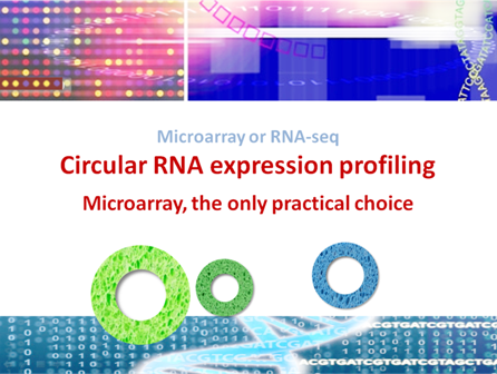 circRNA-array-vs-seq